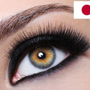 volume-lash-course-japan-chapter-2