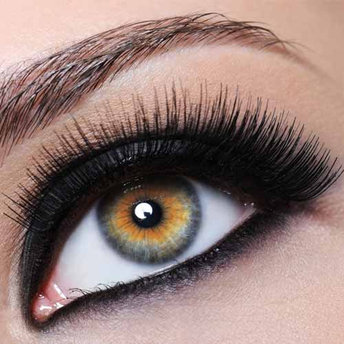 Eyelash Excellence - Russian Voluse Lash Course