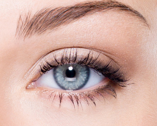 Eyelash Excellence Beginners Lash Course - Level 1