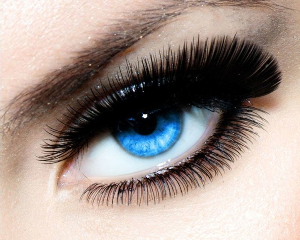 Eyelash Excellence Eye Styling Course