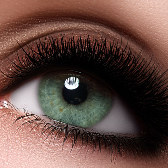 a6c6bb5d0e3 Welcome to the Eyelash Excellence - your one-stop shop for all your lash  needs
