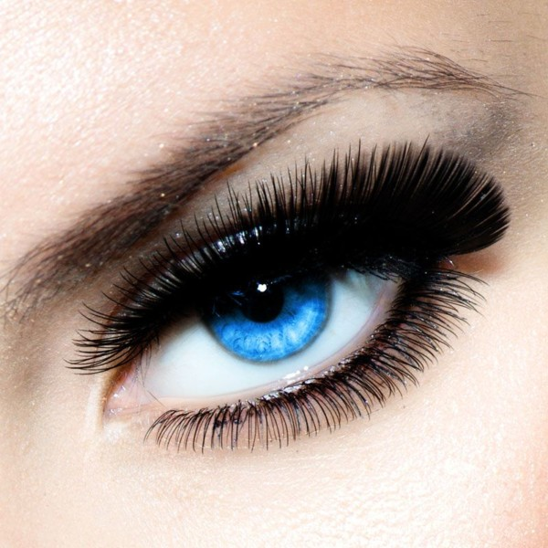 online eyelash training