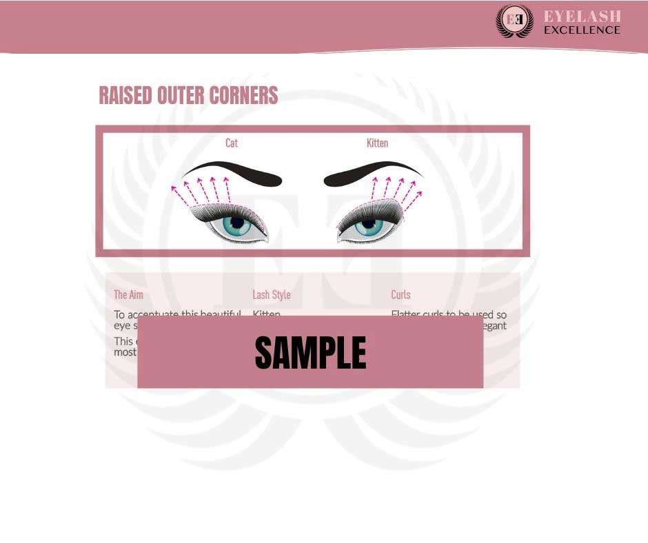 Eye Styling Guide eBook preview